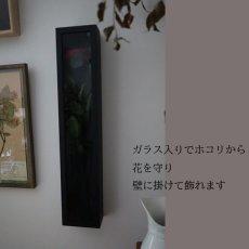 ガラス入りだからホコリをよけながら壁にも飾れる