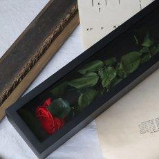 シンプルなバラが茎ごと収まります