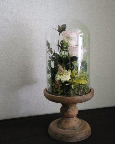 画像1: Preserved flower |ローズガーデンを贈ります【ガラスドーム】