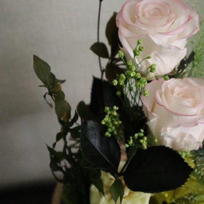 画像3: Preserved flower |ローズガーデンを贈ります【ガラスドーム】