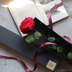 プロポーズや記念日に活躍してくれるシンプルなバラのプリザーブドフラワー